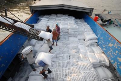 Giảm lượng, tăng chất gạo xuất khẩu